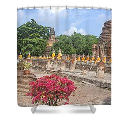 Wat Phra Chao Phya-thai Buddha Images And Ruined Chedi Dtha004 Shower Curtain