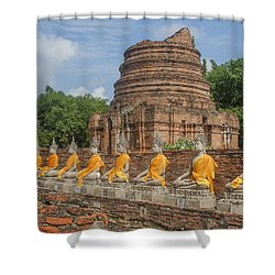 Wat Phra Chao Phya-thai Buddha Images And Ruined Chedi Dtha005 Shower Curtain