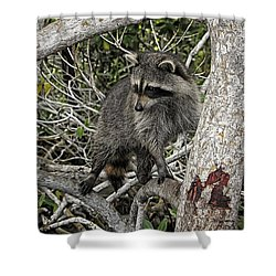 Shower Curtain featuring the photograph Watch Duty by Mark Myhaver