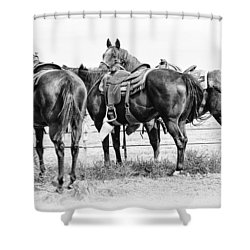 Watching And Waiting Shower Curtain