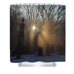 Watching Over Shower Curtain by Karol Livote