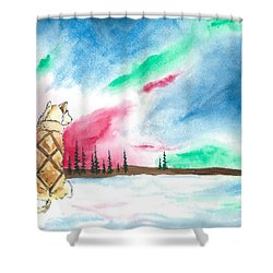 Watching The Lights Shower Curtain by Sarah Glass