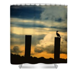 Watching The Sunrise Shower Curtain by Karol Livote