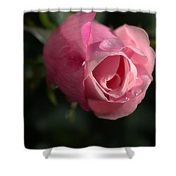 Water And Rose Shower Curtain