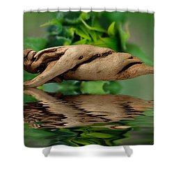 Water Balance Shower Curtain by WB Johnston
