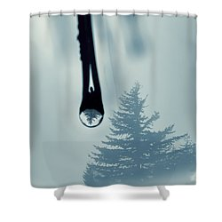 Water Drop With Tree Reflection Shower Curtain by Dan Friend