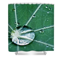 Water Droplet On A Lotus Leaf Shower Curtain by Heiko Koehrer-Wagner