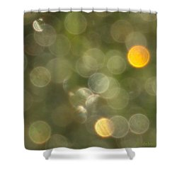 Sacred Water Shower Curtain