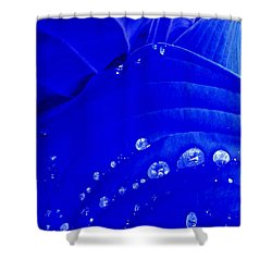 Water Droplets  Shower Curtain