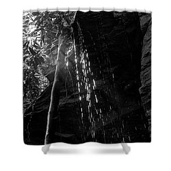 Water Drops After Storm Shower Curtain by Dan Friend