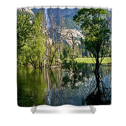 Water Fall Shower Curtain by Menachem Ganon