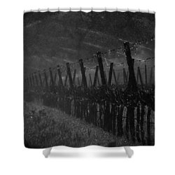 Water Into Wine Shower Curtain by Bill Gallagher