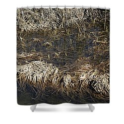 Shower Curtain featuring the photograph Dried Grass In The Water by Teo SITCHET-KANDA