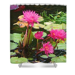 Water Lilies 008 Shower Curtain by Robert ONeil
