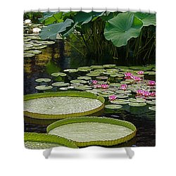 Shower Curtain featuring the photograph Water Lilies And Platters And Lotus Leaves by Byron Varvarigos