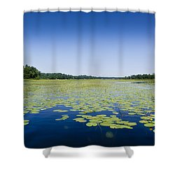 Water Lilies Shower Curtain by Gary Eason