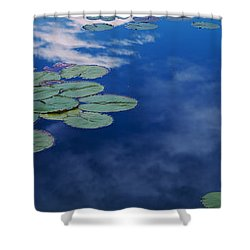Water Lilies In A Pond, Denver Botanic Shower Curtain