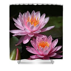 Water Lilies Love The Sun Shower Curtain