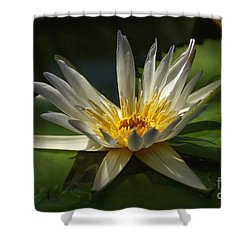 Shower Curtain featuring the photograph Water Lily 2 by Rudi Prott