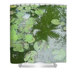 Water Lily Leaves And Palm Trees Shower Curtain