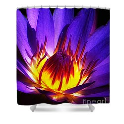 Water Lily Shower Curtain by Mike Nellums