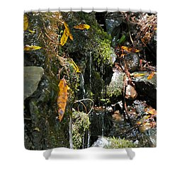 Water Of Life Shower Curtain by Michele Myers