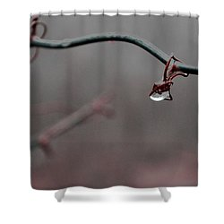 Shower Curtain featuring the photograph Water Retention by Carlee Ojeda