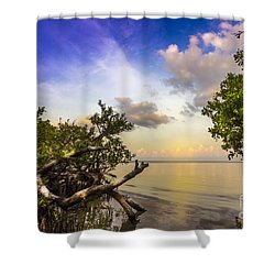 Water Sky Shower Curtain by Marvin Spates