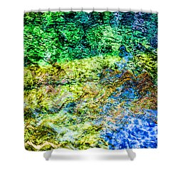 Water Tree Reflections Shower Curtain