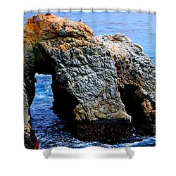 Water Tunnel Shower Curtain