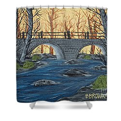 Shower Curtain featuring the painting Water Under The Bridge by Brenda Brown