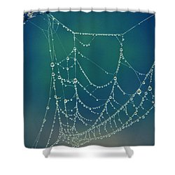 Water Web Shower Curtain