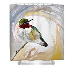 Shower Curtain featuring the painting Watercolor - Broad-tailed Hummingbird by Cascade Colors