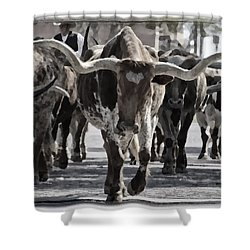 Watercolor Longhorns Shower Curtain