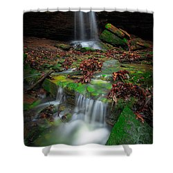Frankfort Mineral Springs Waterfall  Shower Curtain