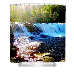 Shower Curtain featuring the photograph Waterfall At Dupont Forest Park Nc 2 by Annie Zeno