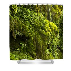 Shower Curtain featuring the photograph Waterfall In Green by Bryan Keil