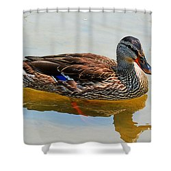 Waterfowl Shower Curtain