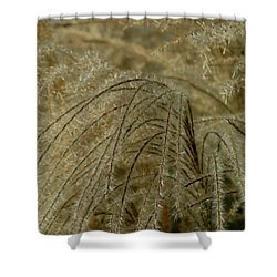 Waterfront Shower Curtain by Joseph Yarbrough