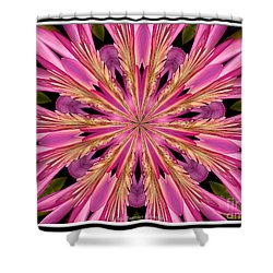 Shower Curtain featuring the photograph Waterlily Flower Kaleidoscope 4 by Rose Santuci-Sofranko