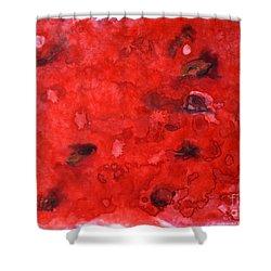 Watermelon  Shower Curtain by Zaira Dzhaubaeva