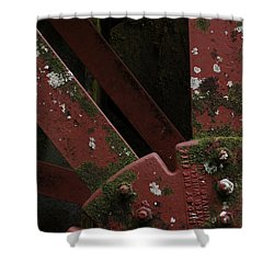 Shower Curtain featuring the photograph Waterwheel Up Close by Daniel Reed