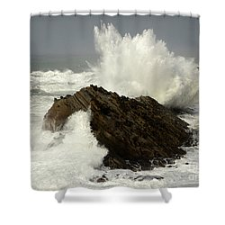 Wave At Shore Acres Shower Curtain by Bob Christopher