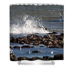 Waves Wind And Whitecaps Shower Curtain