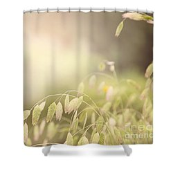 Waving Fields Shower Curtain by Sally Simon