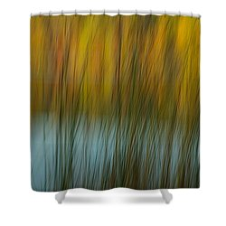 Wavy Shower Curtain by Randy Pollard