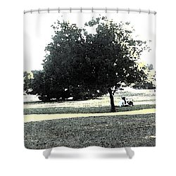 Wc Resting Tree Shower Curtain by Nicki Bennett