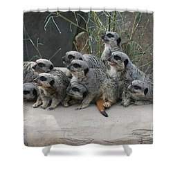 We Are Family Shower Curtain by Judy Whitton