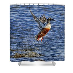 Shower Curtain featuring the photograph We Have Liftoff by Gary Holmes