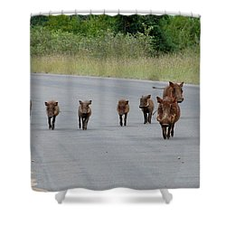 We Own The Road Shower Curtain by Ramona Johnston